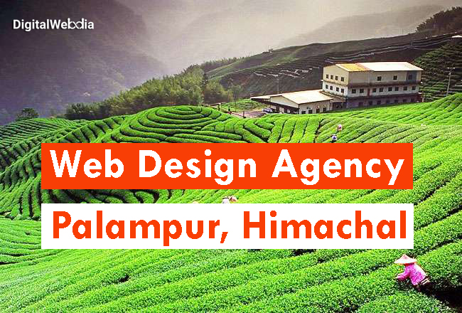 Website Designing Services in Palampur